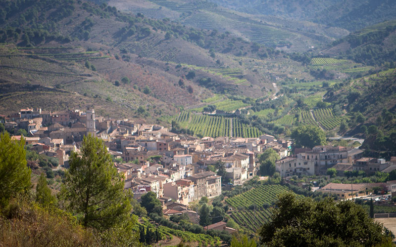 The village of Porrera, seen from above