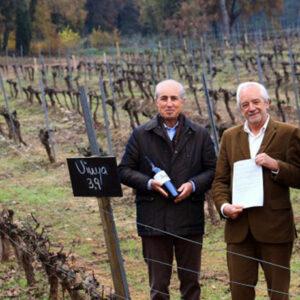 Photo via winery press release