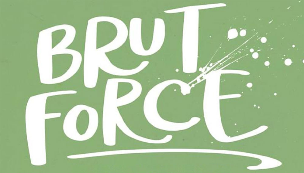 "A book review of ""Brut Force"""